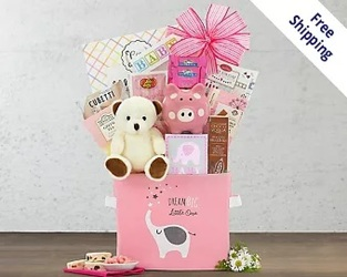 Oh Baby - PINK Gift Basket<br><b>FREE SHIPPING! from Flowers All Over.com