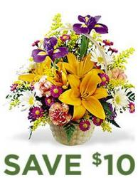 Natural Wonders Bouquet<br><b>Same Day Delivery from Flowers All Over.com