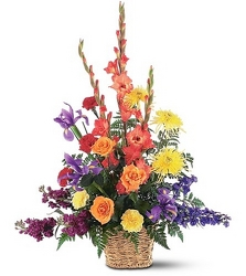 Vibrant Rainbow<br><b>FREE DELIVERY from Flowers All Over.com