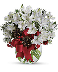 Season's 1st Snowfall<br><b>FREE DELIVERY from Flowers All Over.com