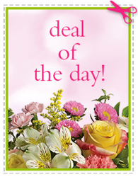 Today's Daily Deal<br><b>Save $10 or More!! from Flowers All Over.com