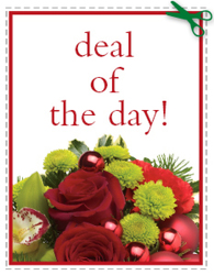 Today's Daily Deal<br><b>Save $20 or More!! from Flowers All Over.com
