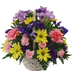 Happy Thoughts Bouquet<br><b>FREE DELIVERY