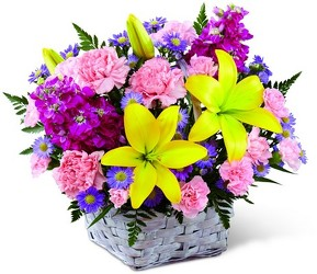 Spring Sonata Basket<br><b>FREE DELIVERY from Flowers All Over.com