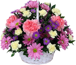 Hello Spring!<br><b>FREE DELIVERY from Flowers All Over.com