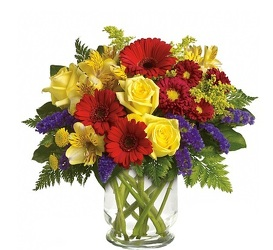 The Eye Opener<br><b>FREE DELIVERY from Flowers All Over.com