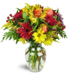 Fantastic Fall<br><b>FREE DELIVERY from Flowers All Over.com