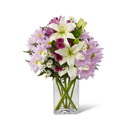 Purple Rain<BR><B>FREE NEXT DAY DELIVERY from Flowers All Over.com