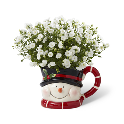 Frosty's Winter Wonderland<BR><B>FREE NEXT DAY DELIVERY from Flowers All Over.com