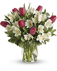 Spring Greetings<br><b>FREE DELIVERY from Flowers All Over.com