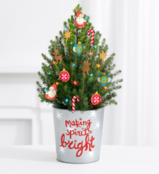 Holiday Magic Tree<br>w/Lights<BR><B>FREE 2 DAY DELIVERY  from Flowers All Over.com