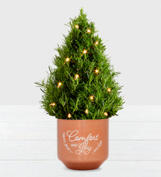Holiday Rosemary Tree w/Lites<br><b>FREE 2 DAY SHIPPING  from Flowers All Over.com