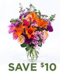 Bright & Beautiful<BR><B>FREE NEXT DAY DELIVERY from Flowers All Over.com