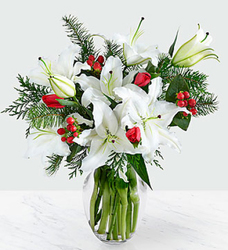 Winter Wonderland<BR><B>FREE TWO DAY DELIVERY from Flowers All Over.com