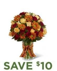 Warmth of Autumn<br><b>Same Day Delivery from Flowers All Over.com