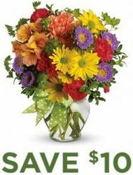 Make a Wish<br><b>Same Day Delivery from Flowers All Over.com