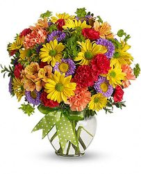 Cheerful Thoughts<br><b>FREE DELIVERY from Flowers All Over.com