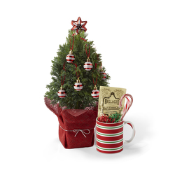 Joys of the Season Holiday Tree<BR><B>FREE NEXT DAY DELIVERY from Flowers All Over.com