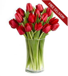 Red Tulips<br><b>Free Next Day Delivery from Flowers All Over.com