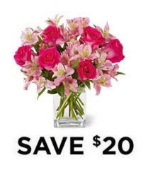 Dreamland Pink<br> 6 Rose Bouquet<b> from Flowers All Over.com