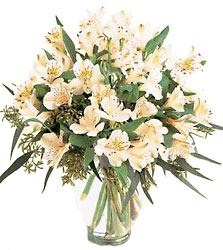 Winter's Elegance Bouquet from Flowers All Over.com