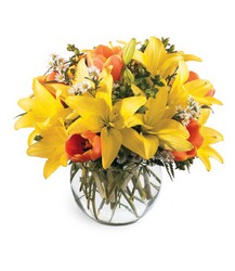All Is Bright Bouquet<b> from Flowers All Over.com