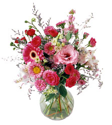 Splendid Day Bouquet<b> from Flowers All Over.com