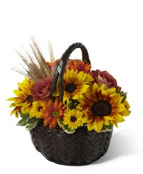 Harvest Sunshine Basket<b> from Flowers All Over.com