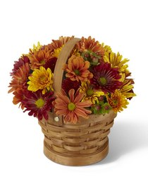 Woodland Wonder Basket<b> from Flowers All Over.com