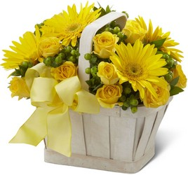 Endless Sunshine Basket<br><b>FREE DELIVERY from Flowers All Over.com