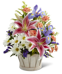 Nature's Wonder<br><b>FREE DELIVERY from Flowers All Over.com