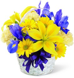 Spirit of Spring Basket<b> from Flowers All Over.com