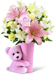 Baby Girl Teddy Bear Bouquet<br><b>FREE DELIVERY from Flowers All Over.com