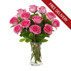 12 Pink Roses <BR><B>FREE NEXT DAY DELIVERY from Flowers All Over.com