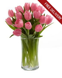 Pink Tulips<br><b>Free Next Day Delivery from Flowers All Over.com