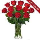 12 <b>Long Stemmed Red Roses<br>FREE SHIPPING!</B>