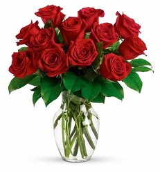 <b>Red Roses with Free Vase<br>Free Delivery from Flowers All Over.com
