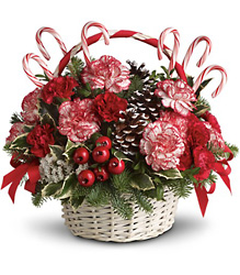 Candy Cane Christmas<b> from Flowers All Over.com