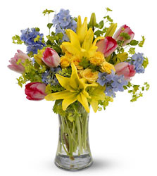 Spring Delight<b> from Flowers All Over.com