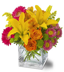 Season's Best<b> from Flowers All Over.com