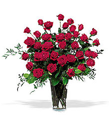 Majestic Roses<br> (3 Dozen)<b> from Flowers All Over.com