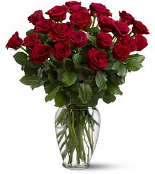 Double Dozen Roses<b> from Flowers All Over.com
