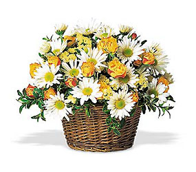 Sunshine In A Basket<b> from Flowers All Over.com