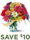 Teleflora's Bright & Bold<br><b>Same Day Delivery
