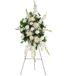 Purity<br><b>FREE DELIVERY from Flowers All Over.com