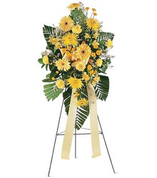 Sunshine<br><b>FREE DELIVERY from Flowers All Over.com