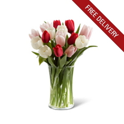 Mixed Tulips<br><b>Free Next Day Delivery from Flowers All Over.com